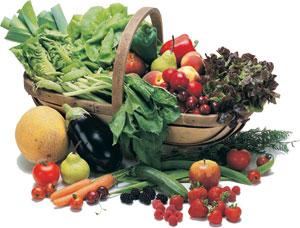 軽井沢の有機野菜を使ったイタリア料理